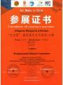 Диплом победителя международного конкурса в Китае. Октябрь 2015 года