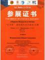Диплом лауреата международного конкурса в Китае. Октябрь 2015 года